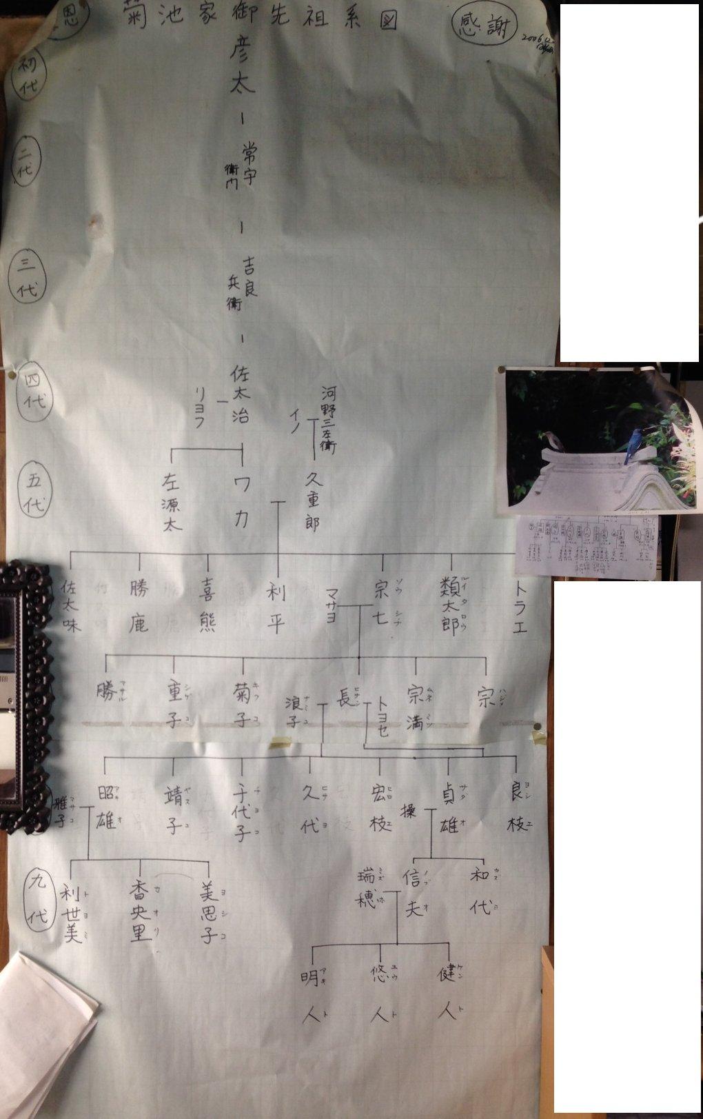 http://www.g-labo.co.jp/image/kikuchike_keizu.jpg