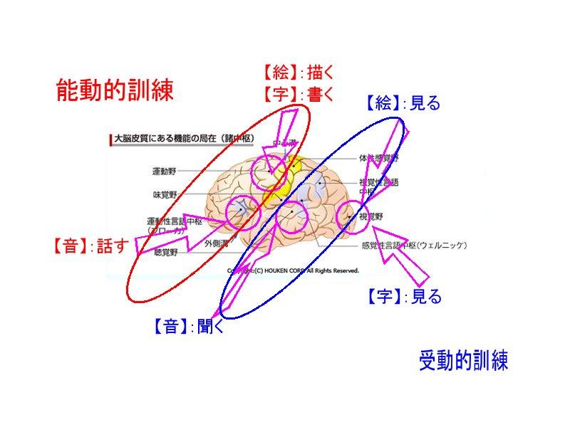 http://www.g-labo.co.jp/image/oto_e_ji_brain.jpg